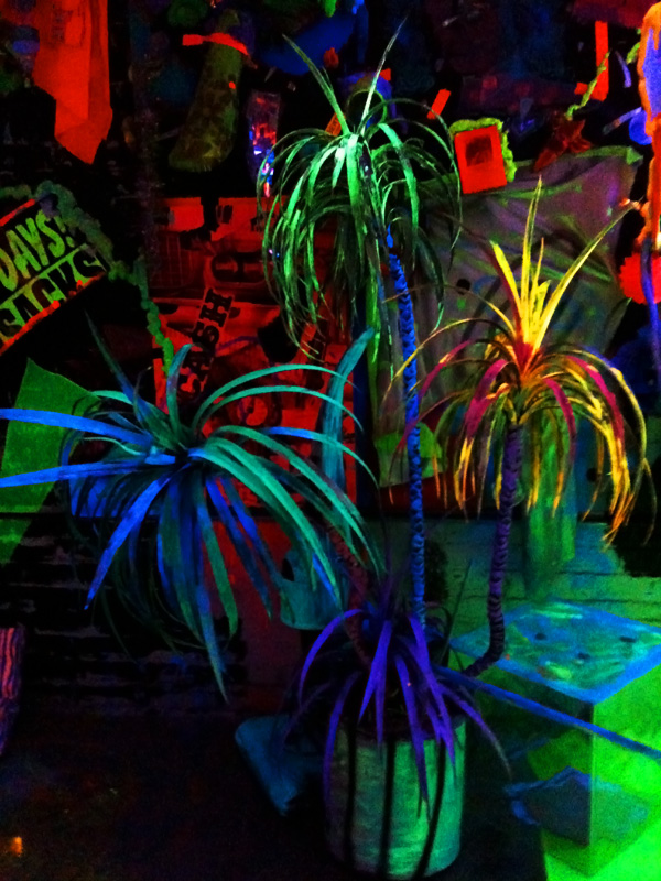 Glow-in-the-Dark Palm Trees